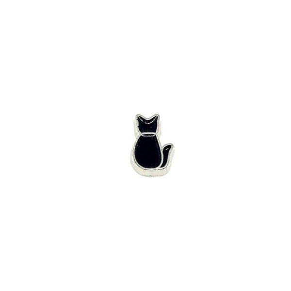 частица-черно-коте