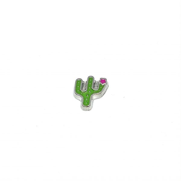 кактус частица-символ